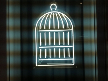 Window-Neon (OS172)